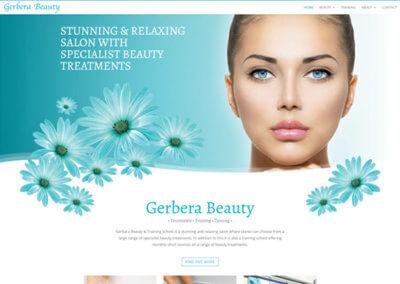 Gerbera Beauty